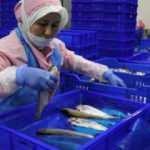 Denizi olmayan kentte üretilip 15 ülkeye ihraç ediliyor