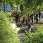Samsun'da katliam! Karavanda ölü bulundular
