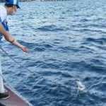 Balık tutmak için attığı oltasına martı takıldı