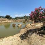 Dünyanın en eski kehanet merkezi: Klaros