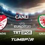 Türkiye Galler maçı canlı izle! TRT EURO 2020 Türkiye Galler canlı skor takip