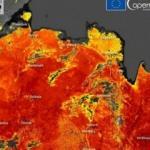 Sibirya'da yüzey sıcaklığı 48 dereceye ulaştı