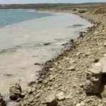 Müsilaj Yunanistan'a da sıçradı