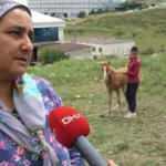 Atlarına kamyon çarpan aileye 23 bin liralık tebligat