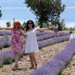 Fotoğrafçıların yeni adresi: Göl manzaralı çiçek bahçesi