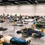 Aşırı sıcaklardan dolayı ölenlerin sayısı 719'a çıktı