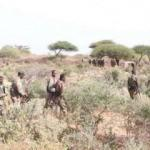 Somali'de terör örgütü Eş-Şebab'a darbe! 15 üyesi etkisiz hale getirildi