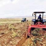 Tarım Kredi'de katılım bankası planı