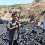 Alın terine kömür karası karışanlar: Mangal kömürü işçileri