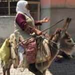 Amasya'da yaşlı kadın eşek üstünde aşı olurken ekiplere şiir okudu!