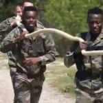 Angers'dan görülmemiş kamp! Yeni sezona komando eğitimi ile hazırlanıyorlar
