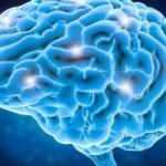 Beynimiz kaç gb veri depolayabilir?
