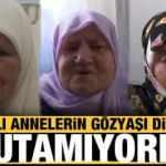 Bosnalı Annelerin evlat acısı dinmiyor
