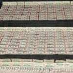 Hakkari'de binlerce sahte dolar ele geçirildi