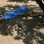 Hatay'da bir kişi kayısı bahçesinde ölü bulundu