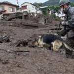 Japonya'daki felakette can kaybı artıyor