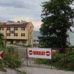 Kastamonu'da 2 köy anlaşamadı, 812 yıllık çınarın yolu kapatıldı!