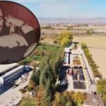 Miras kavgası Türkiye'deki dev şirketi bitirdi