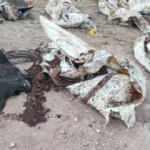 Son dakika: Afrin'de PKK vahşeti: 35 sivilin cansız bedeni bulundu