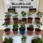 Balıkesir'de polisten 9 şüpheliye uyuşturucu operasyonu