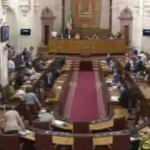 Endülüs Parlamentosu'nda fare paniği
