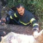 Kuyuya düşen itfaiyenin yardımına itfaiye koştu