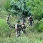 Kartal ve Beykoz'daki ormanlarda denetim