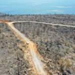 Bodrum ve Milas'ta yanan ormanlık alanlar havadan görüntülendi