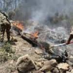 Cezayir'deki orman yangınlarında 42 kişi hayatını kaybetti!