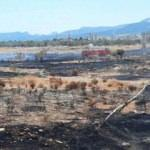 Silifke'deki otluk alanda çıkan yangın kontrol altına alındı