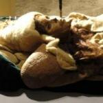 Tarım havzasında bulundu! İşte Çin'i sarsan 3800 yaşındaki güzel