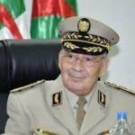 """Cezayir'de 69 kişinin öldüğü yangınlarla ilgili """"komplo"""" açıklaması"""