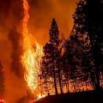 Fransa'nın güneyindeki yangın 2 gündür devam ediyor
