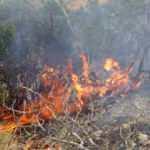 Şemdinli'deki orman yangını korkutuyor