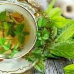 Taze nanenin faydaları nelerdir? Her derde deva nane limon çayı nasıl yapılır?