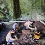 Zonguldak'ta büyük keşif! 4 bin 500 yıllık...