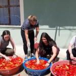 3 ABD'li genç kız Adana'da köy hayatı yaşadı!