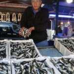 Balıkçılardan yeni sezon fiyatlar açıklaması!