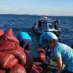 Bayrampaşa Sebze ve Meyve Hali' nde kaçak avlanan 6 ton midye yakalandı