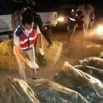 Kamyonetinde 285 kilo esrarla yakalanan sürücü tutuklandı
