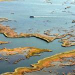 Labirent sazlıkları ile turistlerin gözdesi: Dalyan Kanalları
