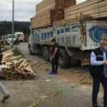Üzerine kereste düşen kamyon şoförü hayatını kaybetti