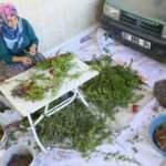 Köylü kadınlar üretiyor, Avrupa'ya satılıyor