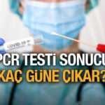 PCR testi sonucu kaç günde çıkar? Korona testi sonucu kaç saate öğrenilir?