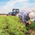 Tarımsal Girdi Fiyat Endeksi'nde sert yükseliş
