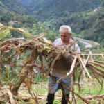 Atandığı ülkeye gidemeyen büyükelçi kendini bahçe işlerine verdi