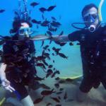 Antalya'da turistler dalışı sevdi, sezon uzadı