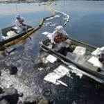 California'da çevre felaketi: Sahil petrolle kaplandı