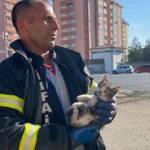 Otomobilin motorundan kurtarılan kediye askerler sahip çıktı