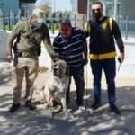 Polis, çalınan 'Malaklı' cinsi köpeği 20 saatlik kamera görüntüsü izleyerek buldu